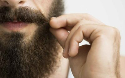 INC: Lions and Camels and Beards (Oh My!): The Making of a Viral Video